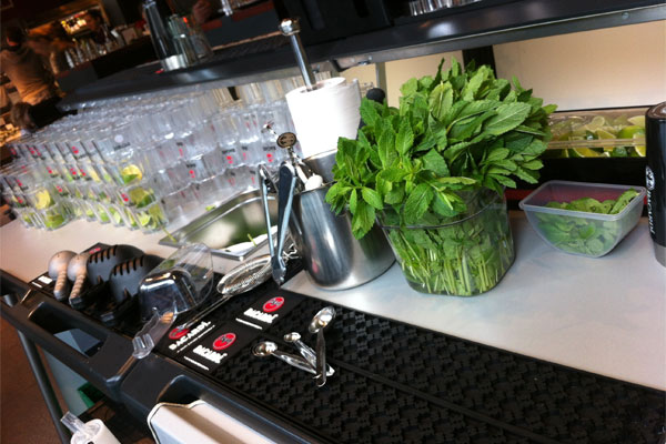Counter of a portable bar full of fresh mint, drinks and glasses
